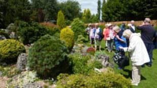 Ashwood Nurseries 6