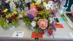 Flower & veg show 2016..5